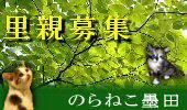 norasumi_link.jpg